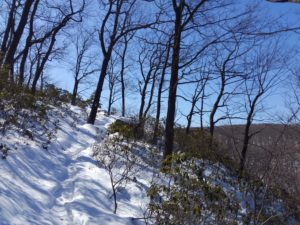 Steep snowy hillside, bare trees, clear sky.